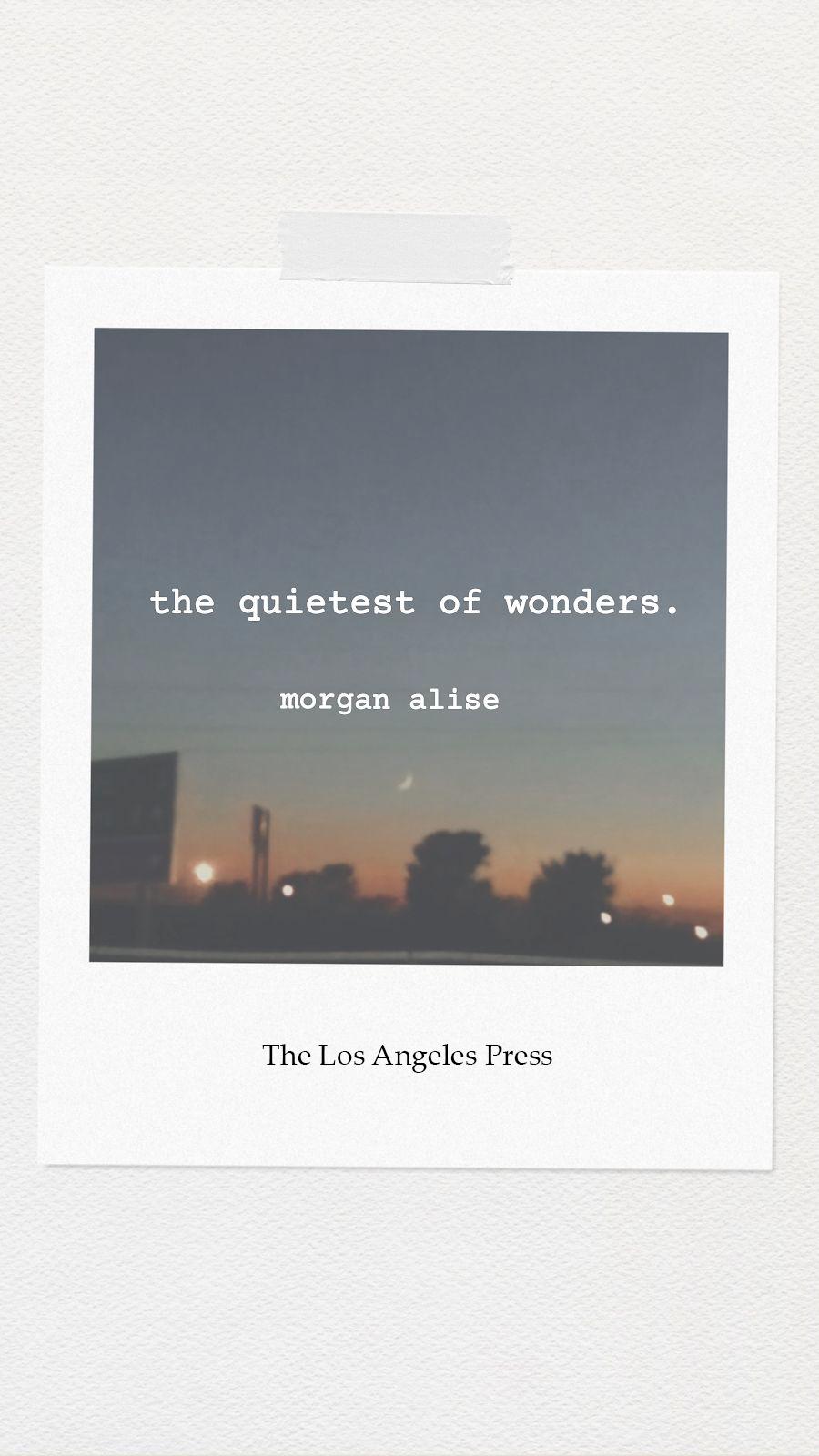 the quietest of wonders